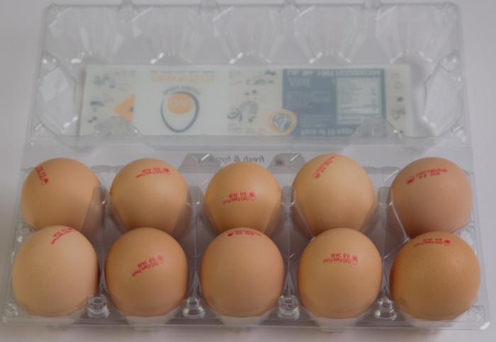 OVO Farm Fresh handpicked Brown Eggs 10 Pcs