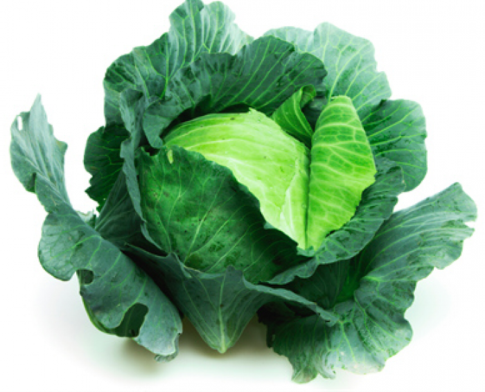 Organic Cabbage - বাঁধাকপি