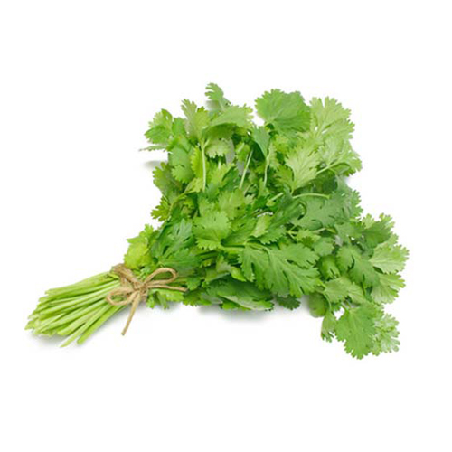 Organic Coriander leaves - ধনেপাতা