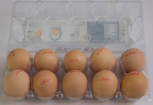 OVO Farm Fresh handpicked Brown Eggs 6 Pcs