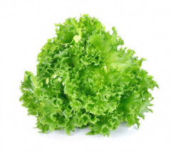 Lettuce Grand Rapid