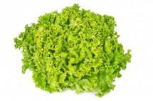 Lettuce Lolo-Bionda