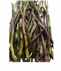 Organic Kochur Loti  - কচুর লতি