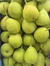 Kashmiri Nakh (Small Pears)