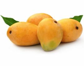 Mango Himsagar - Madrazi
