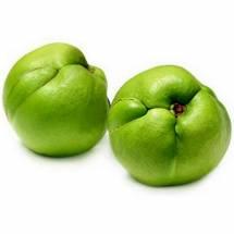 Elephant Apple - চালতা