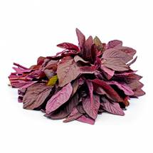 Organic Red Amarnath - লালশাক
