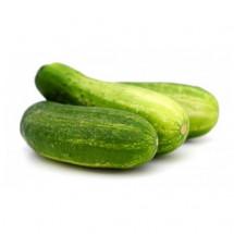 Cucumber - শসা