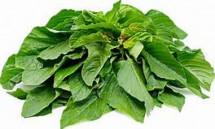 Organic Green Amarnath